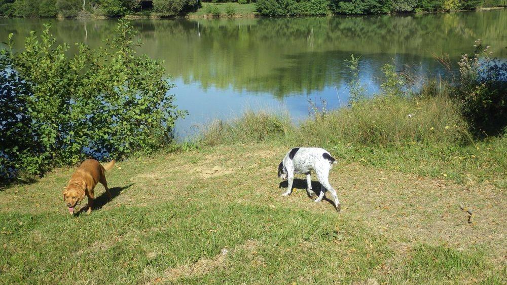 Max and Hugo at Miramont lake