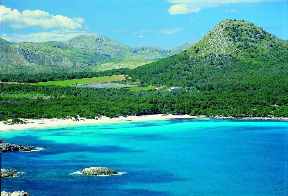 Cala Agulla-Mallorcas schönster Strand