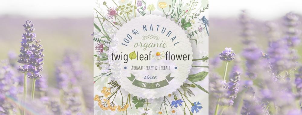 twig leaf flower organic vegan aromatherapy herbal tea collection