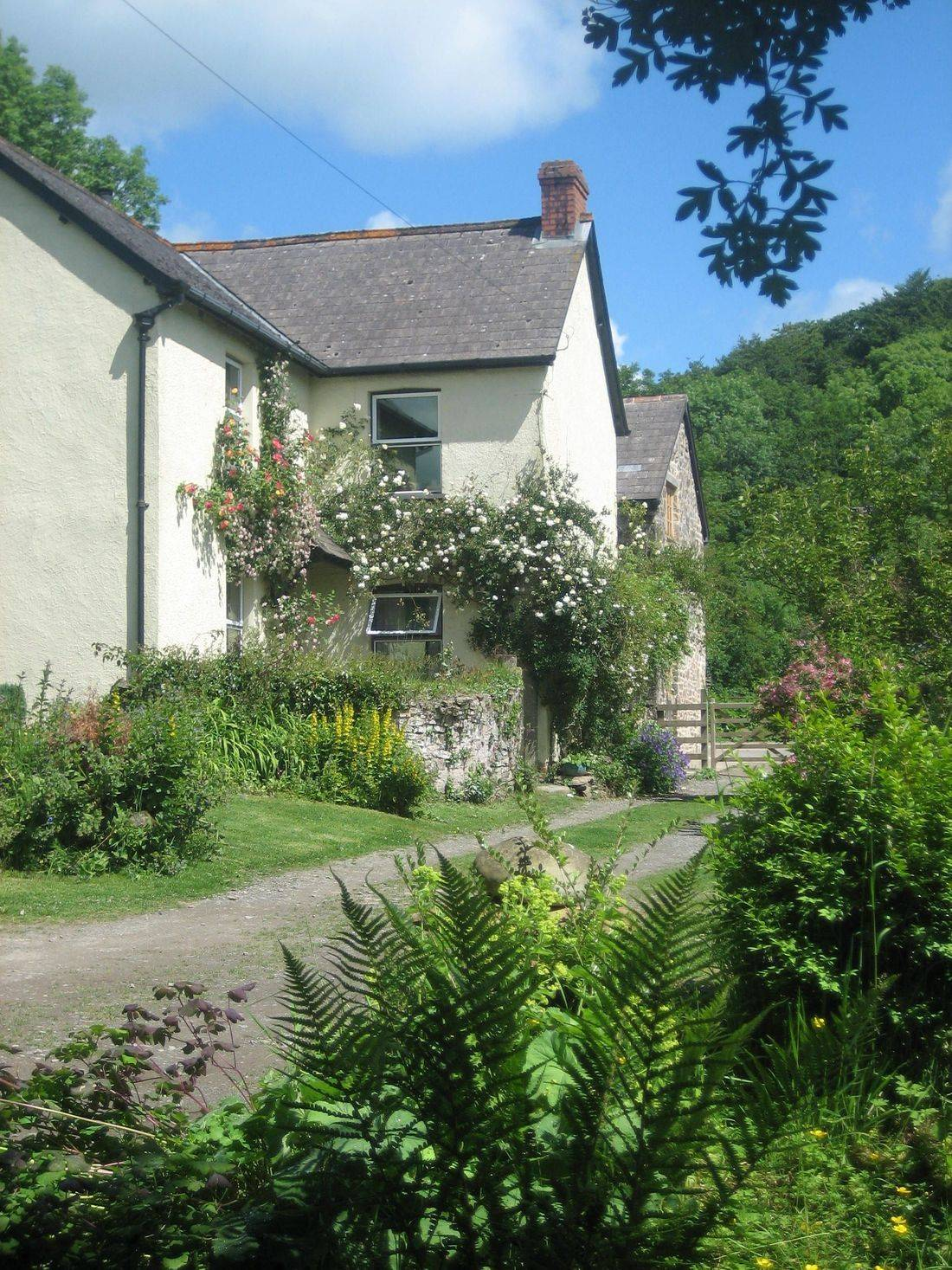 Streamcombe Exmoor South West Cookery School Bed & Breakfast