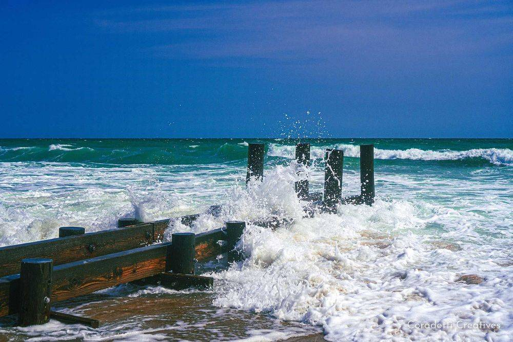 Coradetti Creatives - Nature Photography - Nags Head - Outer Banks - North Carolina