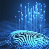 Digital cheapest fingerprinting services