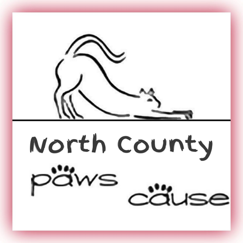 North County Paws Cause
