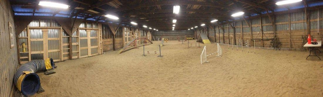 dog agility indoor arena, top skill K9 facilities