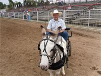 2011 Ozark Mule and Donkey Days