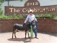 2013 Great Celebration, Shelbyville, TN