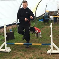 dog training Kirkby , agility classes, dog aggression