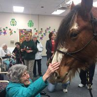 Old woman petting horse