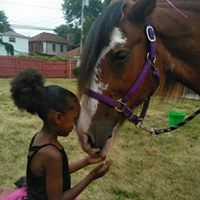Girl and Clydesdale