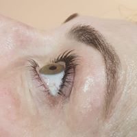 Lasts up to 12 weeks natural lashes