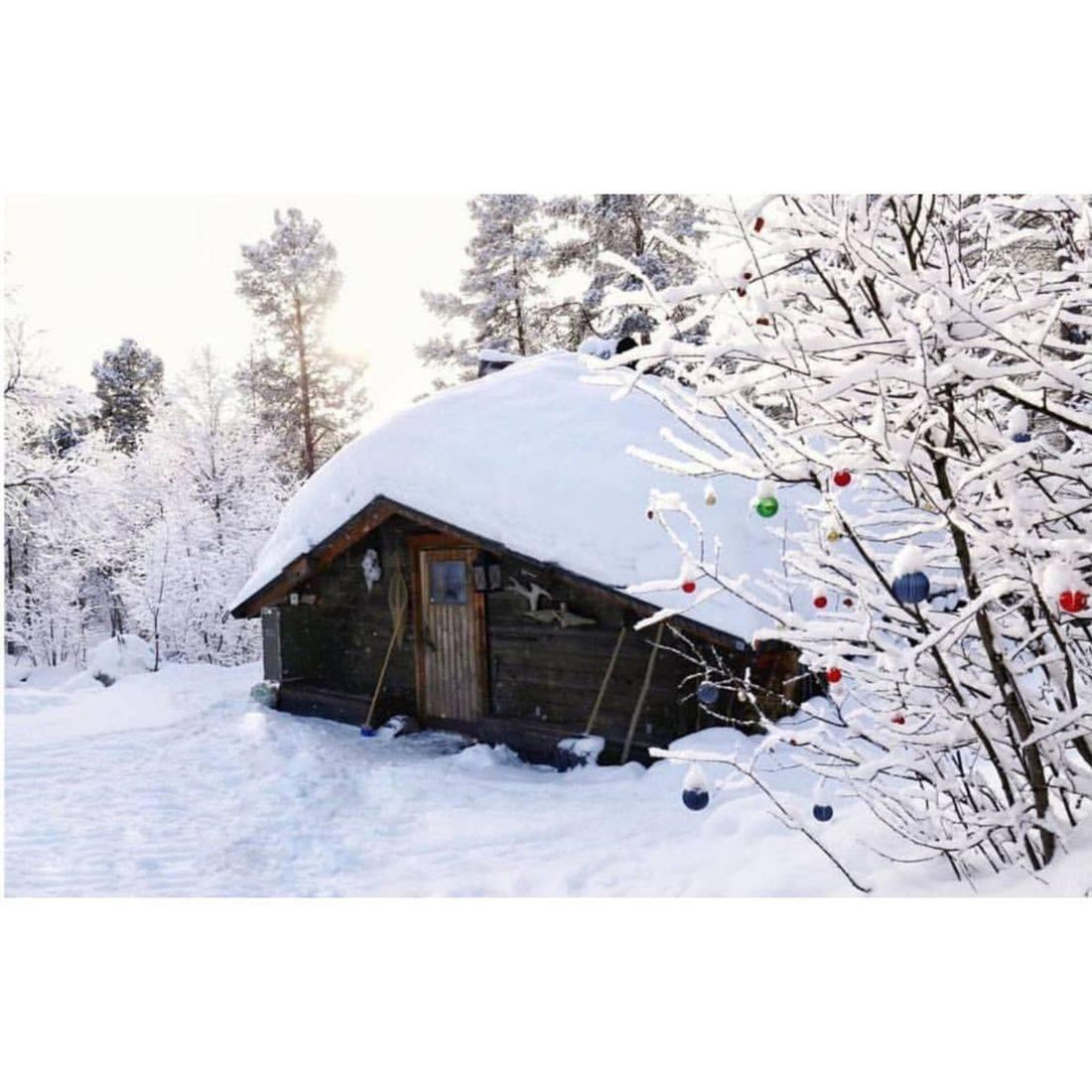 Cabin in Kiruna