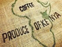 kenya, peaberry, coffee, fresh roasted, edmonton, yeg, roaster