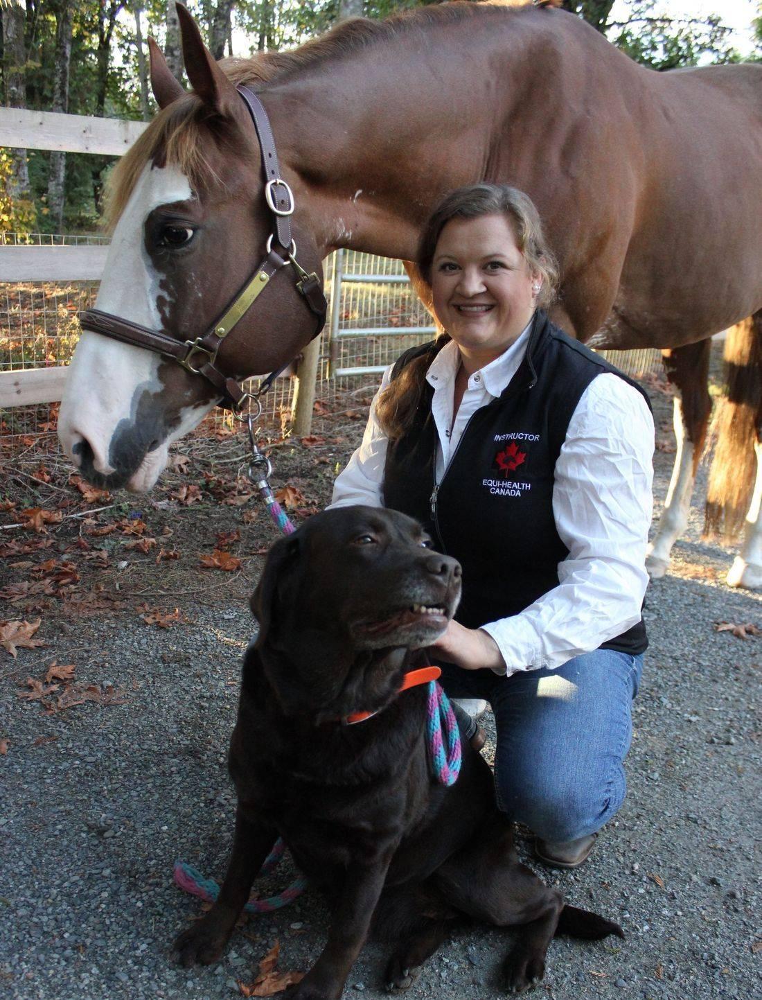 Horse, Horse First Aid, Equine First Aid