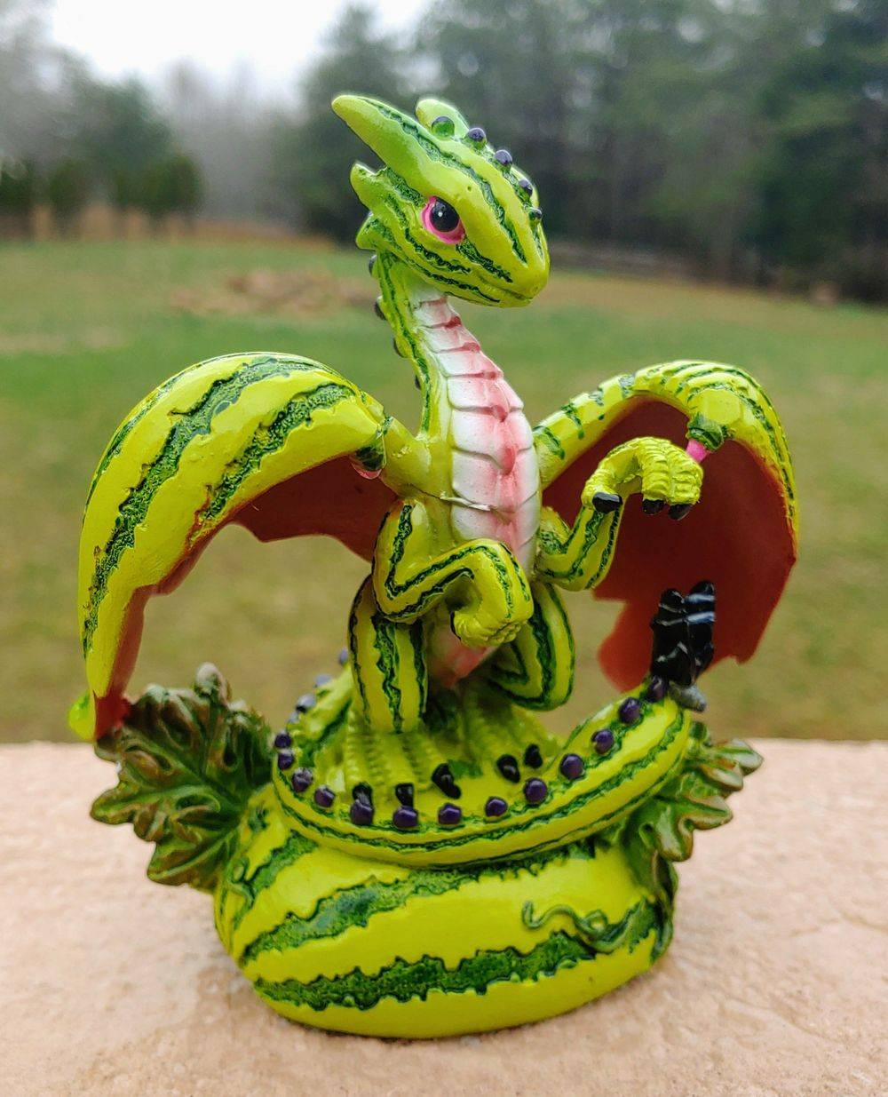 Garden Dragons at the Wildflower Garden and Fairy Retreat