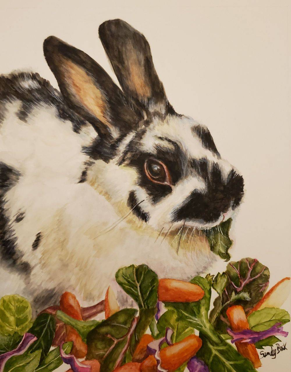 sandy bock, pet portrait, polish rabbit, portrait artist, portrait art, buny, portrait illustration, custom portrait painting