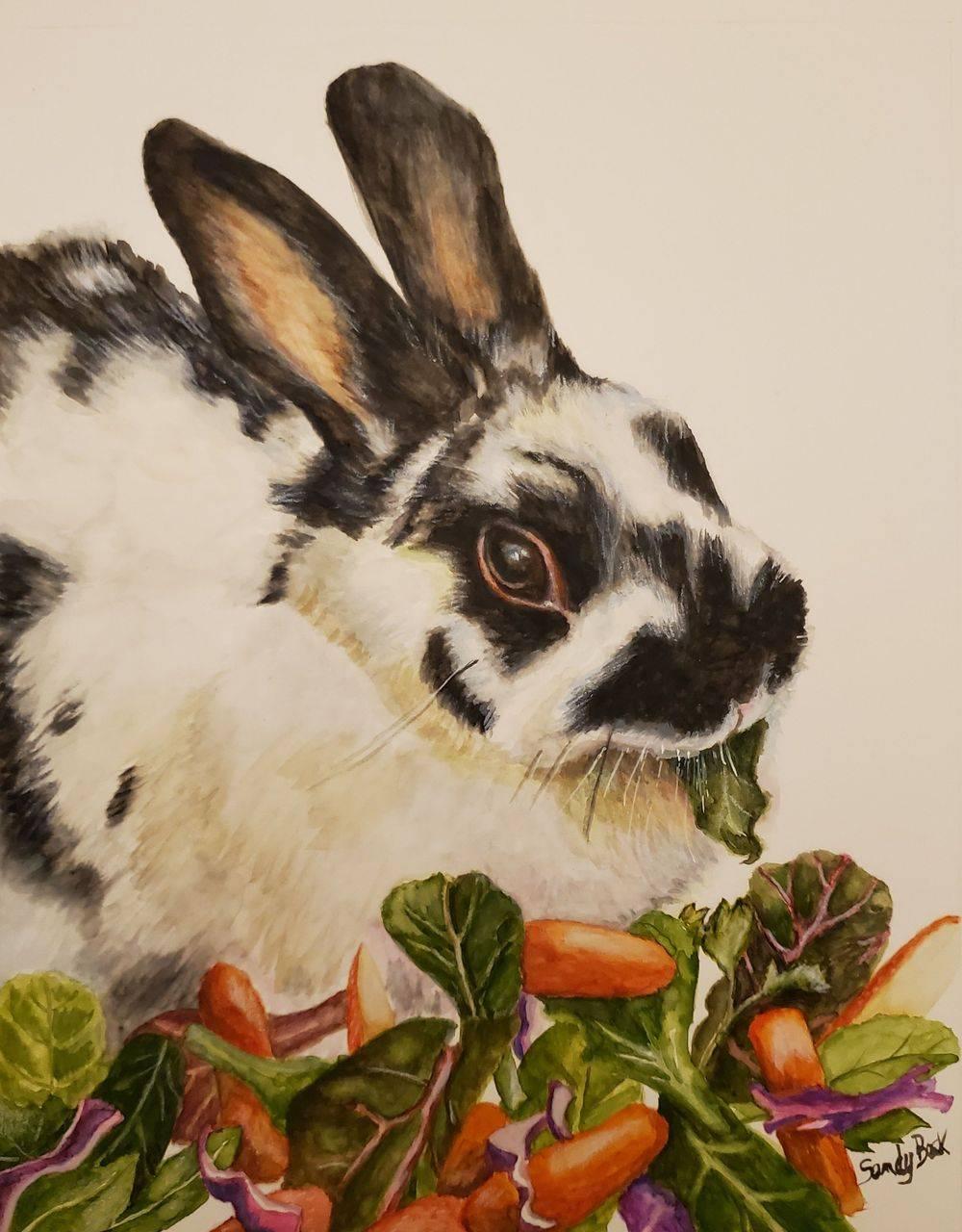sandy bock, pet portrait artist, pet portraits, rabbit, bunny, custom portrait artist