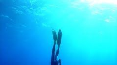 la chasse à la coulée consiste a descendre vers le poisson en l'approchant au maximum avant de tirer.