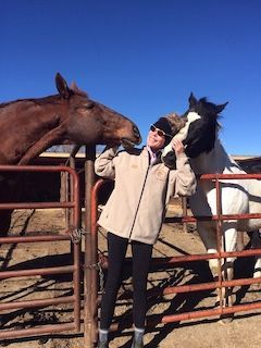 Red Bike Trail Therapy, Red Bike Counseling, Equine-Assisted Therapy, Ann Raabe, EquusEQ