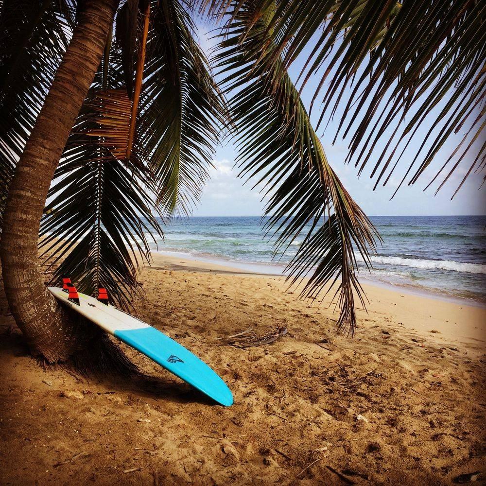 Surf, Martinique, ecole de surf, Spot de surf, Cours de surf