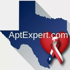 image texas with a heart and ribbon for aptexpert.com