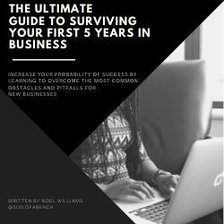 eBook on business