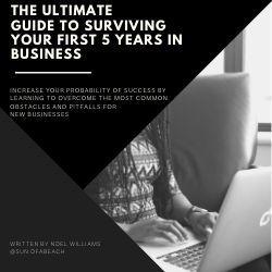 eBook on business