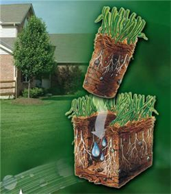 lawn aeration, core aeration, Greenwell Landscaping Rochester, NY penfield, ny webster, ny