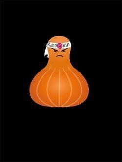 Pumpkin Casa di Lana