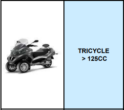 TRICYCLE >125CC