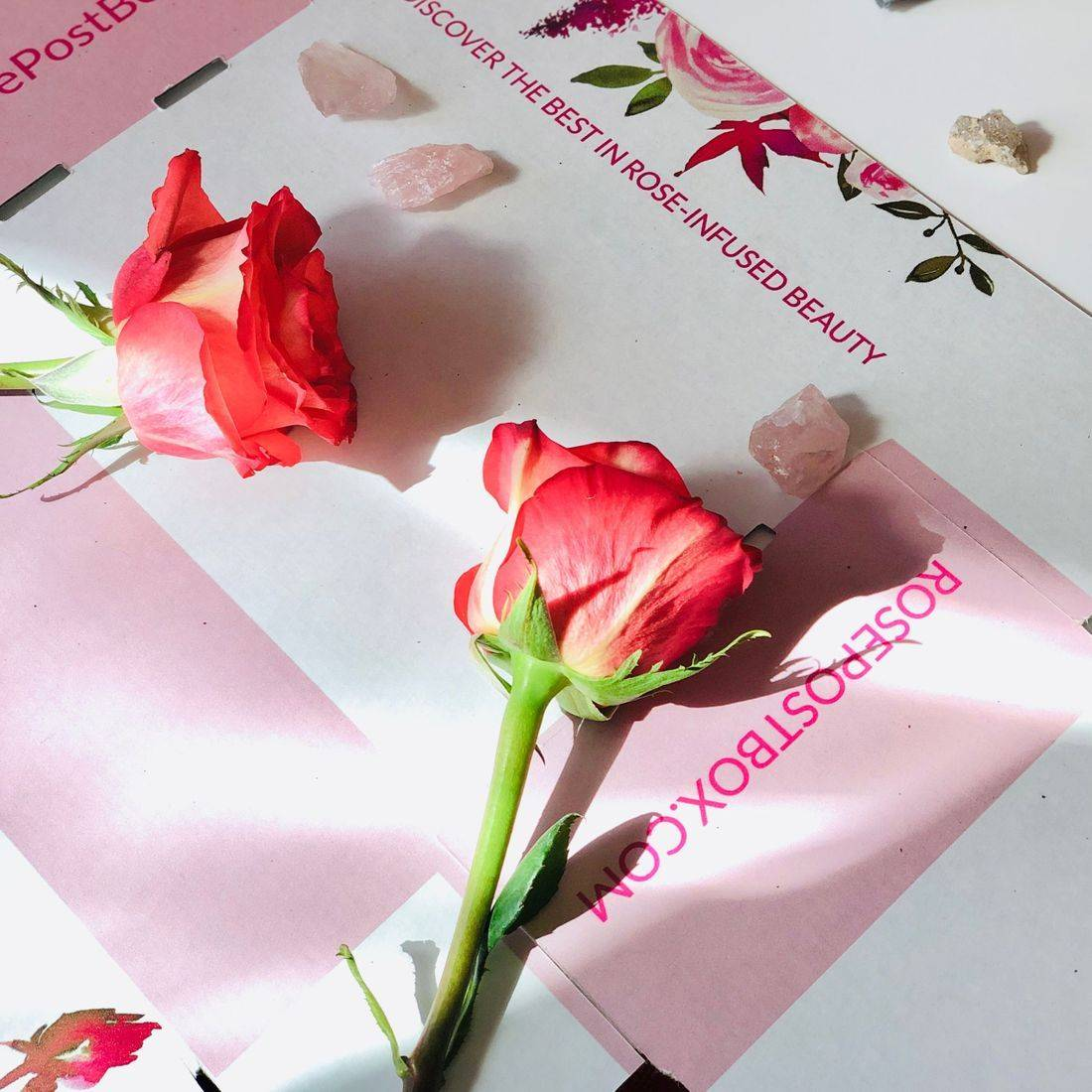 rosepost box, clean rose beauty, best rose beauty, rose oil, green beauty subscription, lavender skincare