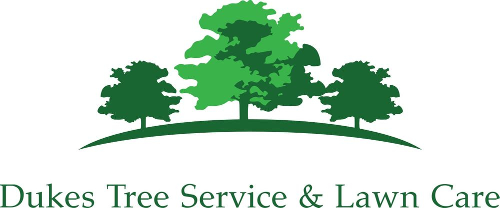 dukes tree service and lawn care amherst