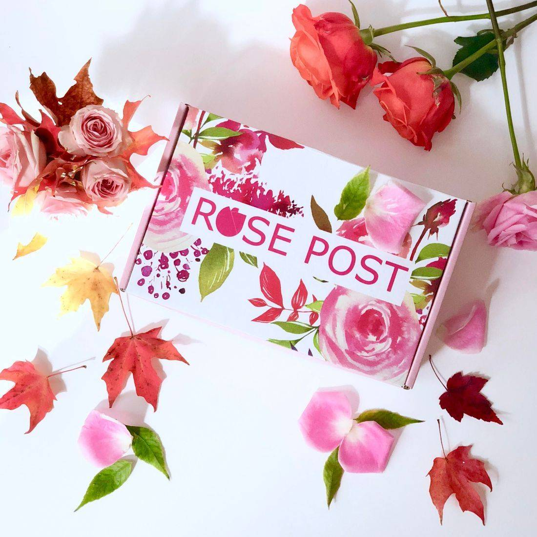 rose skincare, rose oil roller, rose oil, rose absolute, rosepost box, blue flower, essential oils, aromatherapy, self-care products
