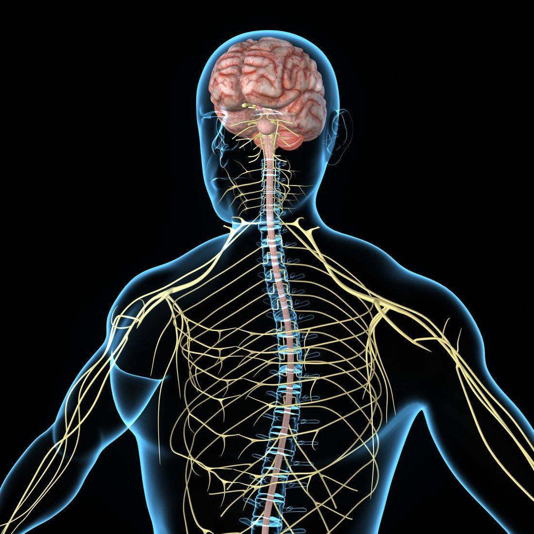 Autoimmune Diseases Pain Management Center Rochester NY