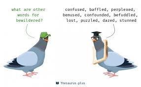 #bewildered #confused #troubled #pemachodren #wisdom