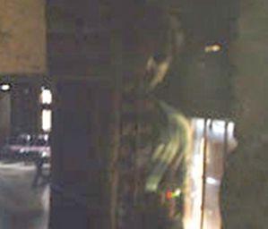 Brookdale Lodge ghost photo, haunted hotel