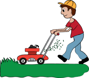 Lawn Mowing Service Traralgon available with our Pet Sitting Service.