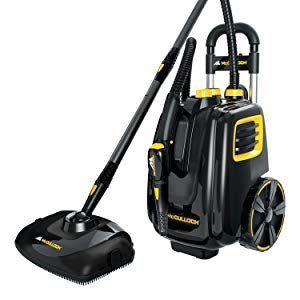 professional steam cleaning, natural cleaning, environmentally safe cleaning, pet friendly cleaning, no chemicals, wallpaper removal, glass shower door cleaning, tile and grout cleaning, hard floor steam cleaning, soap scum removal, heavy duty deep cleaning, sanitizer, sanitizing steamer, steam clean drapes, steam clean fabrics, kills bed bugs, all natural