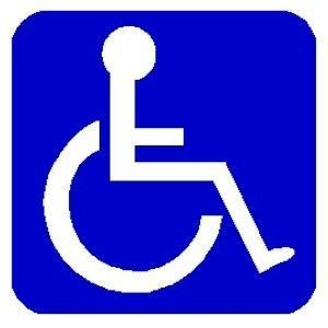 DISABLED ACCESS LOGO