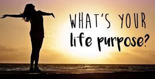Life Purpose counseling and readings
