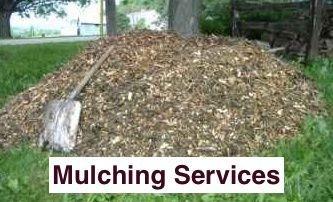 pile of bush mulch