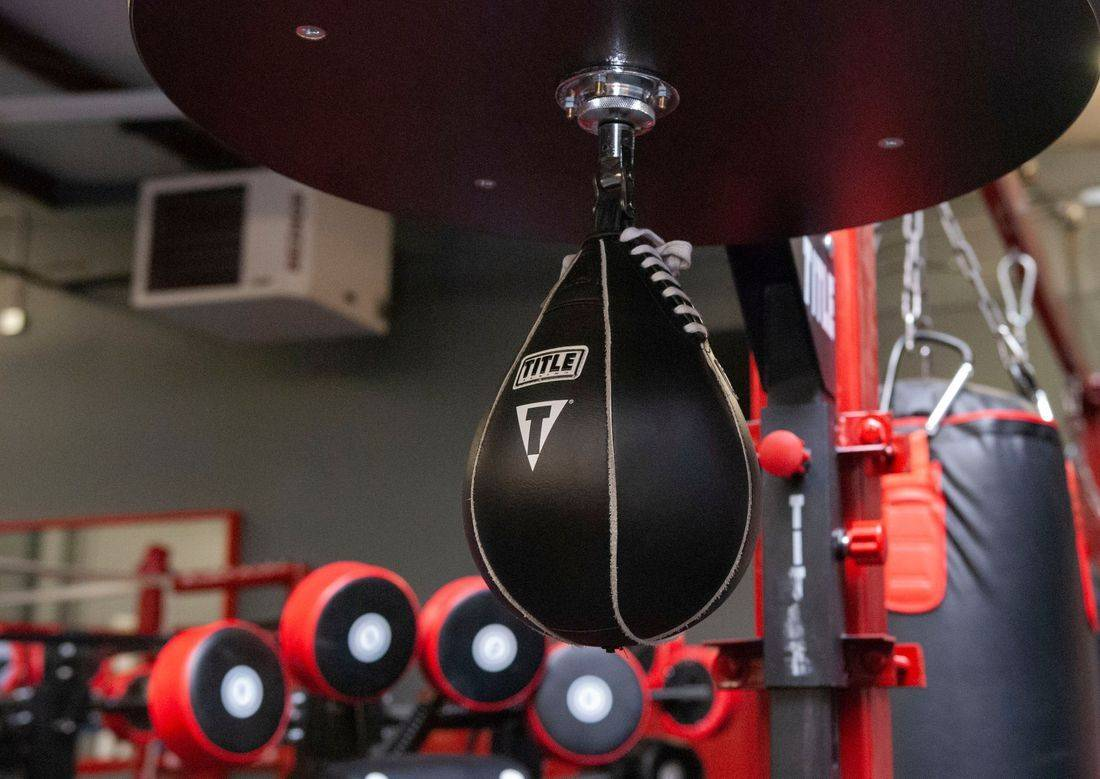 Title speed bag at prize fight fitness