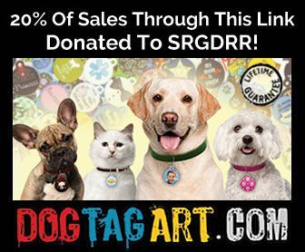 Customizable Pet Collar Tags by Dog Tag Art