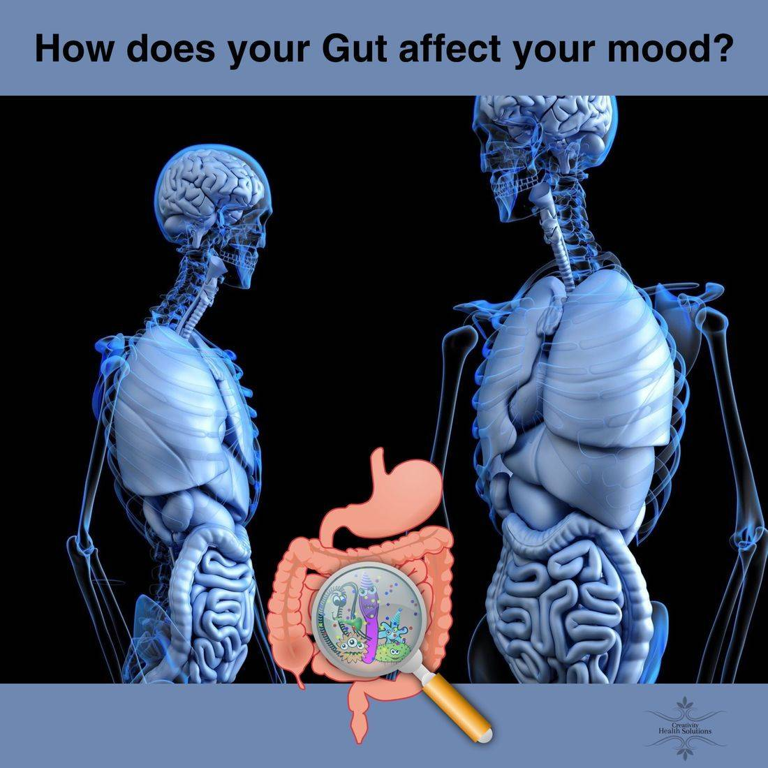 Gut health, gut-brain connection, depression, anxiety, wellness