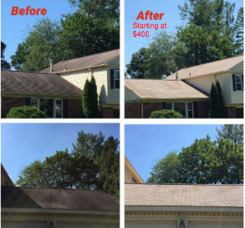 Before Roof cleaning waldorf md