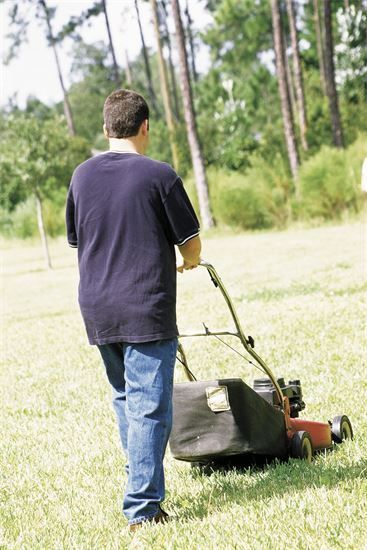 from a one-off visit or a regular sheduled service oddjobs will keep your lawn looking smart and tidy all year round.