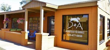 dermatology for animals tucson arizona, animal dermatology tucson, dog dermatology tucson, dog allergies tucson, veterinary dermatology tucson