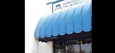 Omaha Nebraska, Dermatology for Animals in Omaha, Dog Dermatologist Omaha Nebraska, Dermatologist in Omaha, Veterinarian Omaha, Cat dermatologist Omaha, Omaha Vets, Omaha dermatology vet, Animal Dermatologist, Pet Dermatologist Omaha, Veterinary dermatologist near me