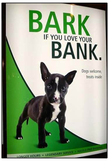TD Bank loves dogs : Phillys pet friendly bank.