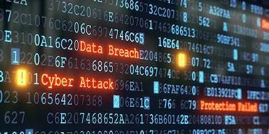 Vulnerability Testing in Maryland