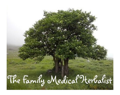 Elena Renier, Family Medical Herbalist
